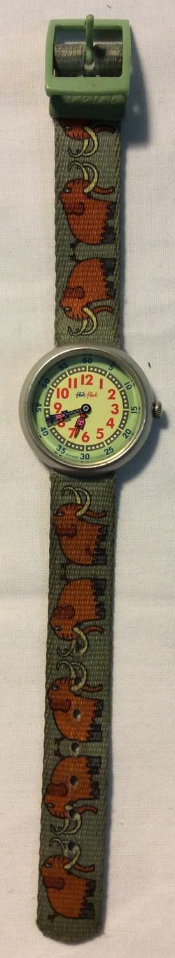 Mammoth Watch