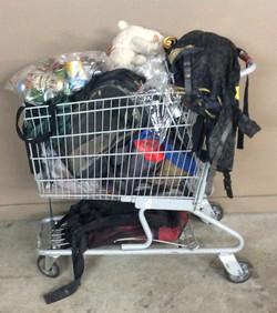 Homeless person cart