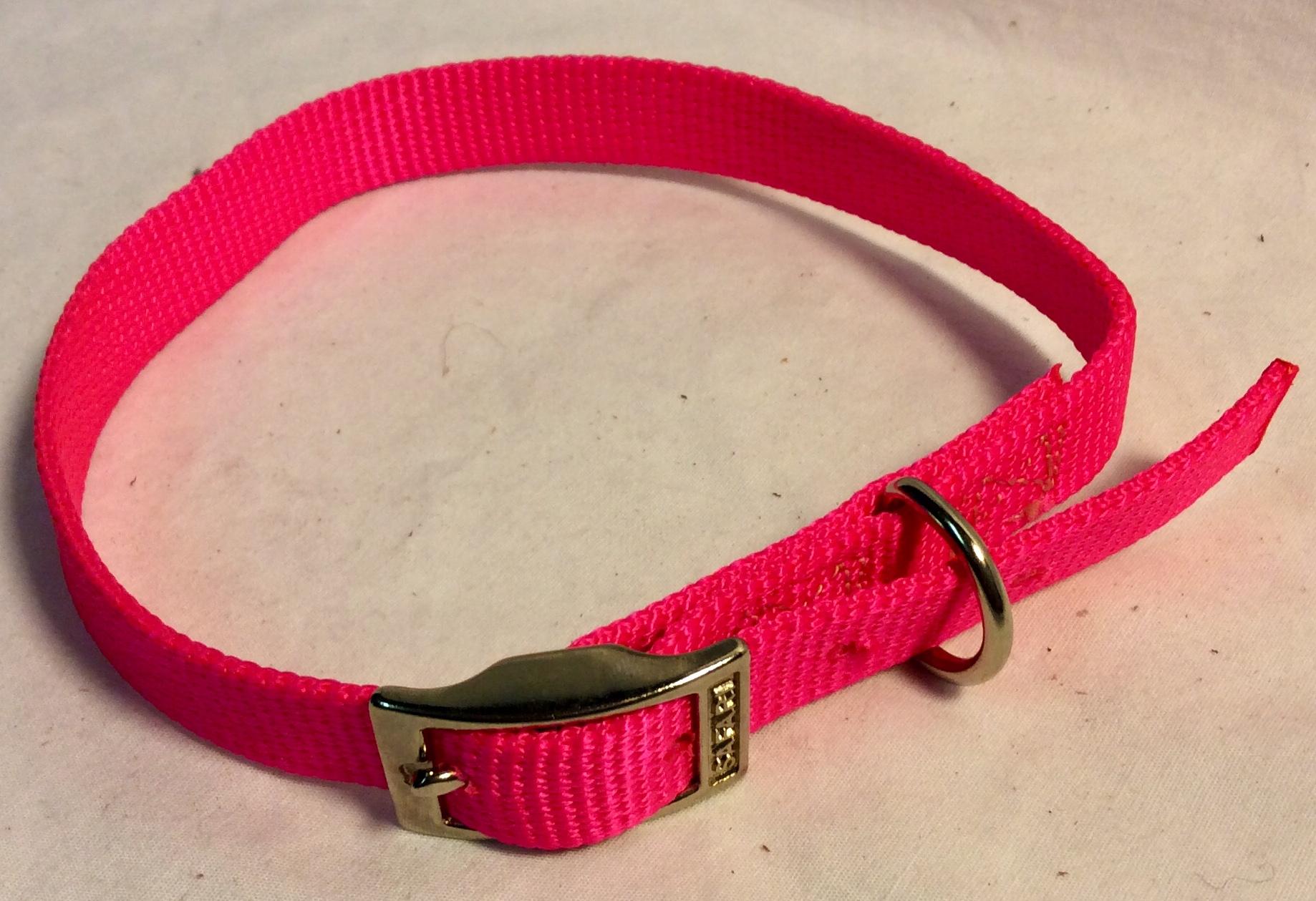 Safari Pink nylon dog collar