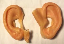 Custom Build Silicone ears