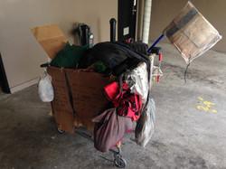 Homeless Cart