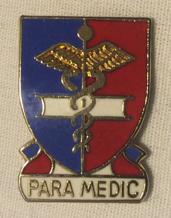 Paramedic Lapel pin- Gold with red