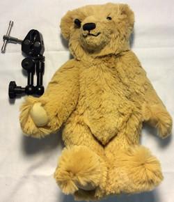 Teddy Bear security camera