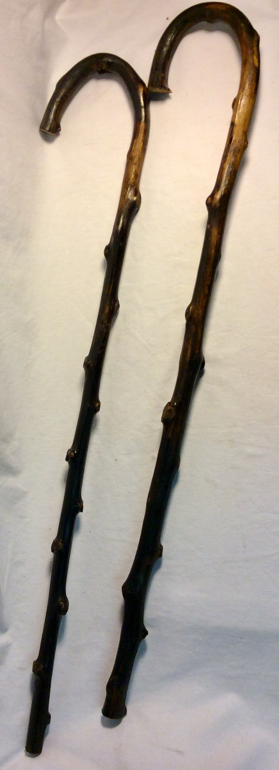 Dark knobbly wooden cane
