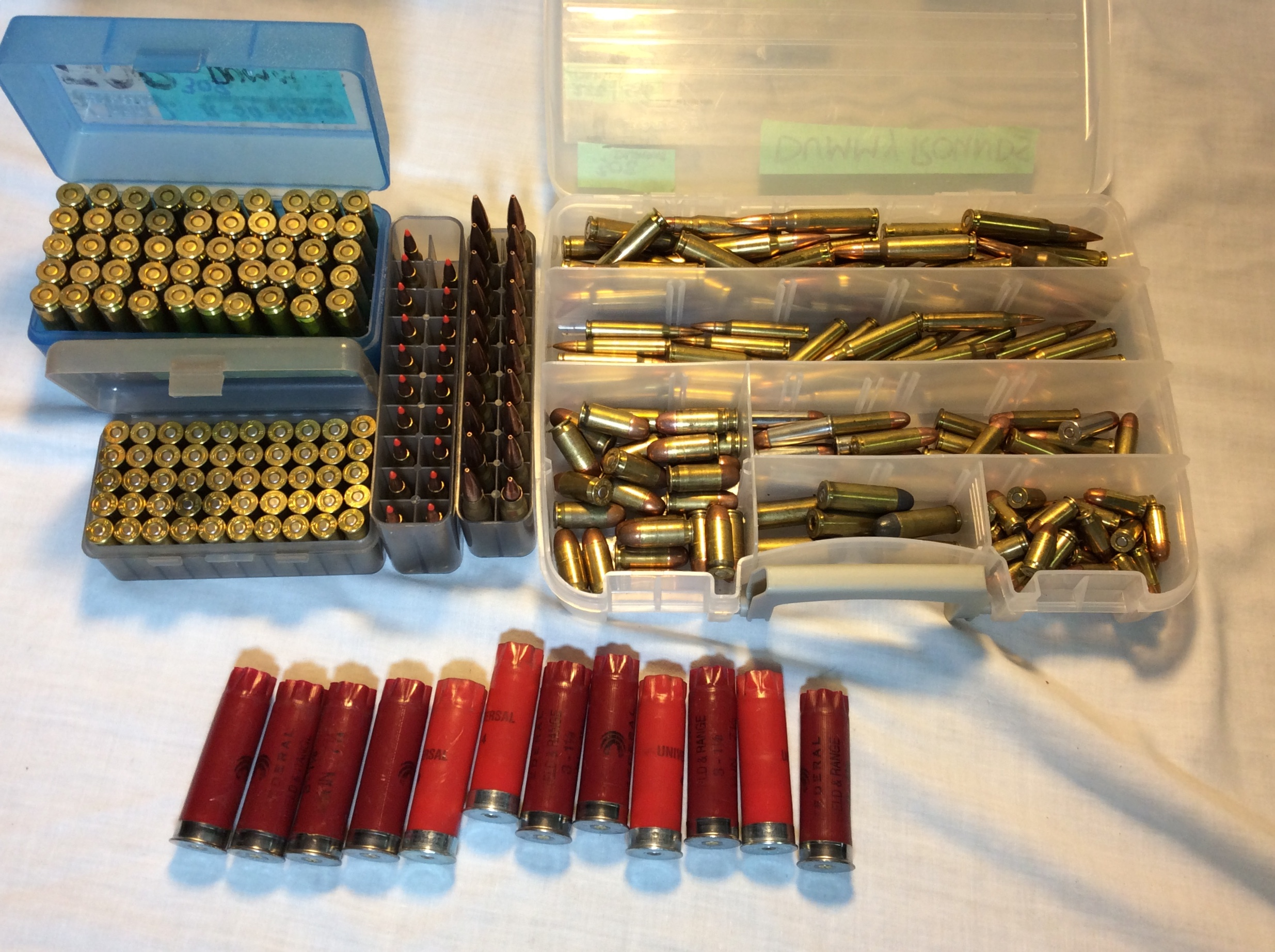 Assorted Dummy Rounds