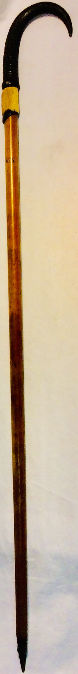 Wooden cane with pointy bottom. Top imitating a bird claw and fur detail.