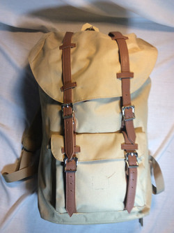 Hershel Beige backpack with leather