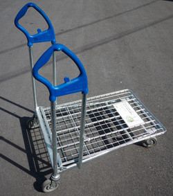 Department Store Cart