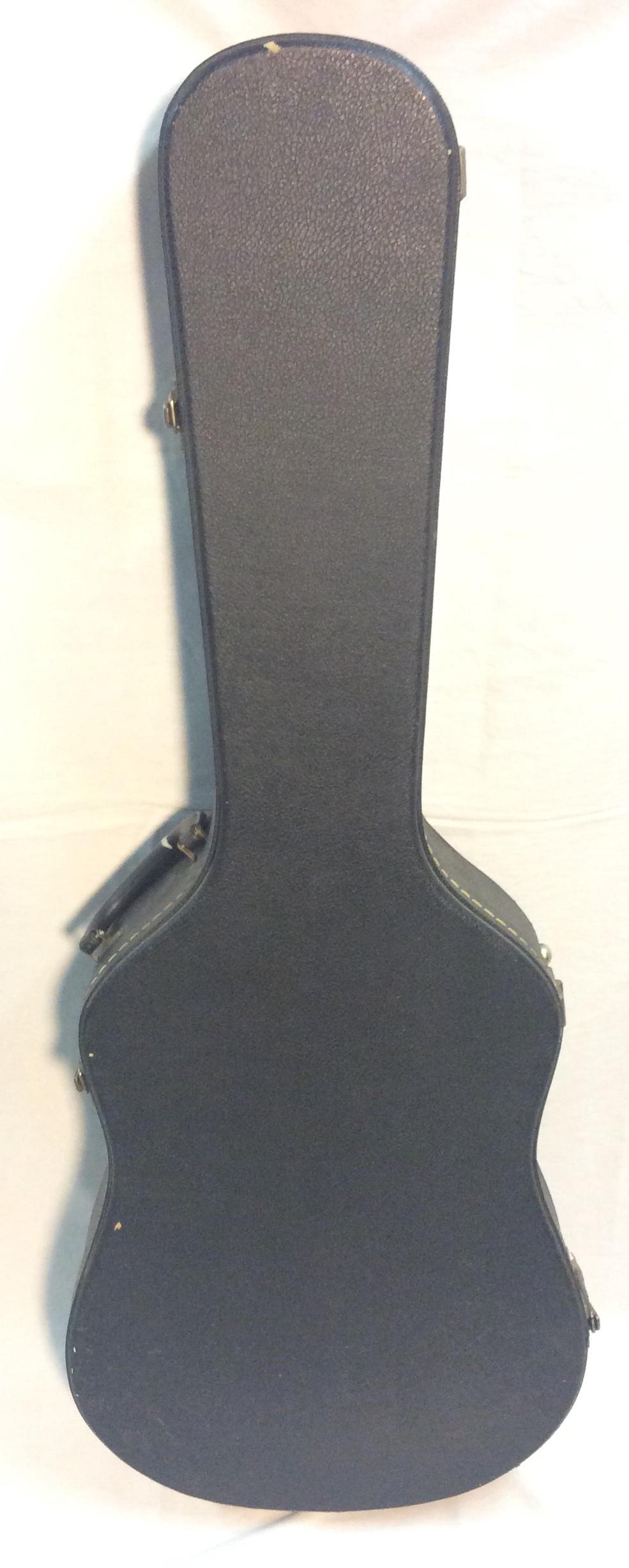 Hard Guitar Case