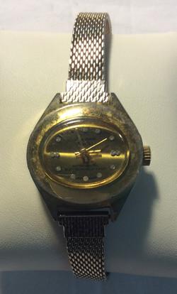 Longreen watch - oval gold face