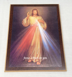 """""""Jesus I trust in you"""" picture"""