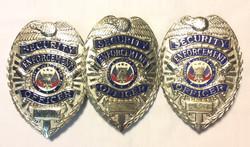 Metal silver Security Enforcement