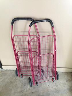 Personal Shopping Carts