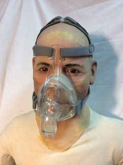 F&P Nose and Mouth Mask