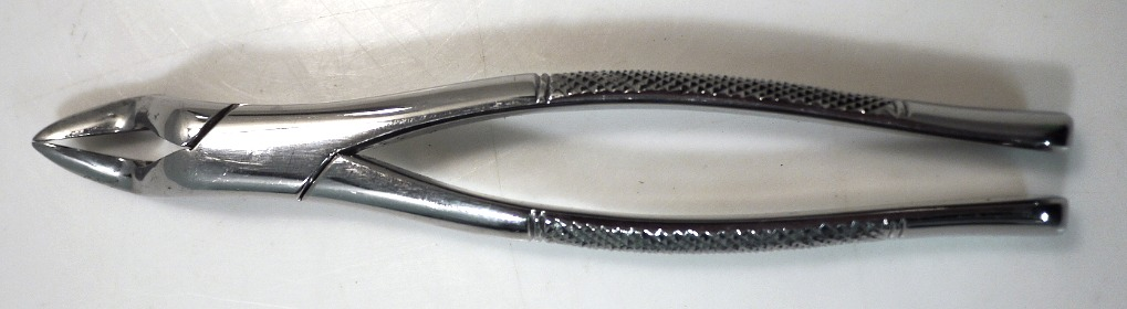 Dental Extracting Forcep