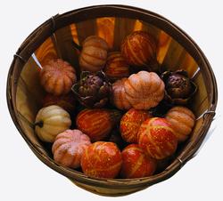 Gourds and purple artichokes