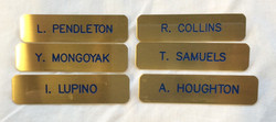Gold Name Badges. 6 assorted names (with doubles).