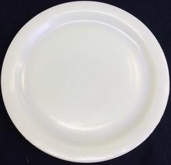 Breakaway plastic dinner plates (white)