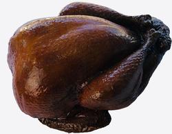 Fake Roast Turkey