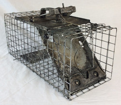 Large rat trap, aged, rusty