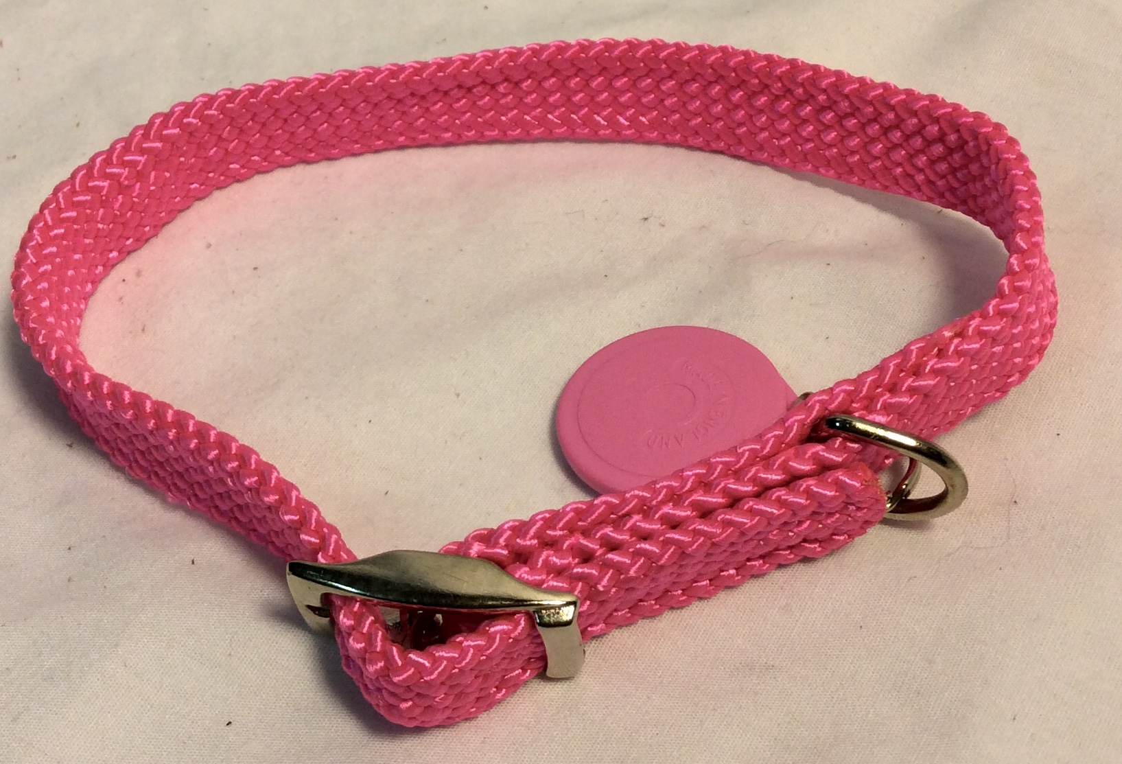 Bright pink nylon with pink name tag dog collar