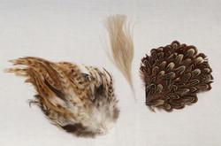 Miscellanious feathers