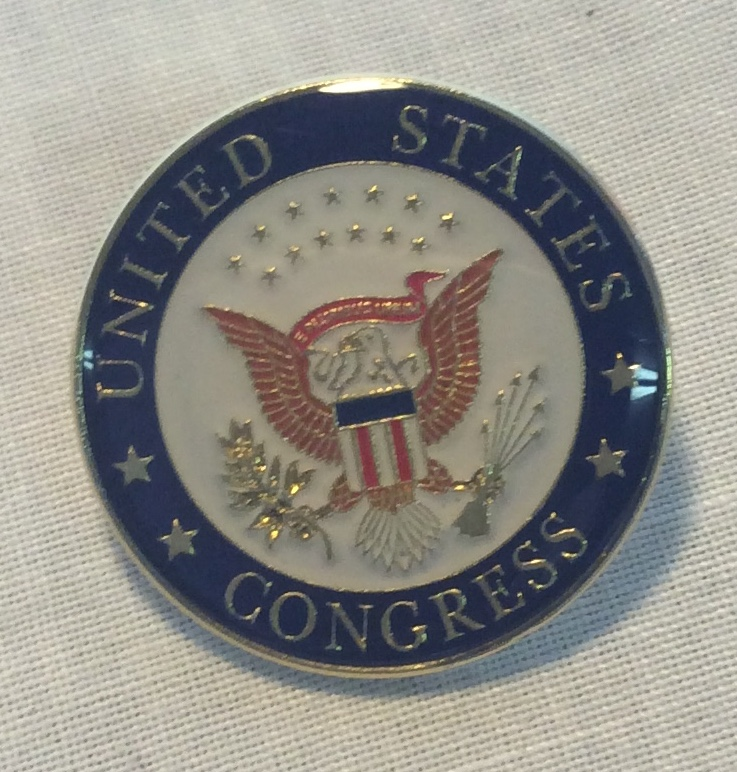 United States Congress Pin
