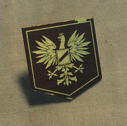 Brown pin with Eagle crest