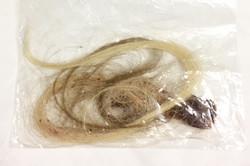Ripped human hair