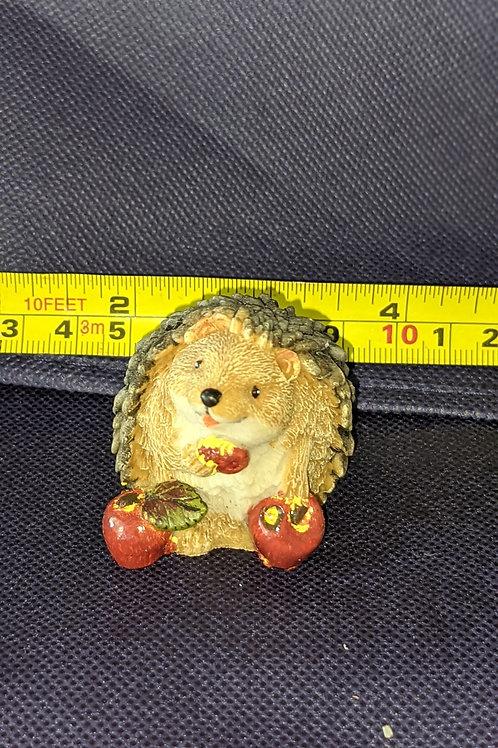 Cute Hedgehog Friend