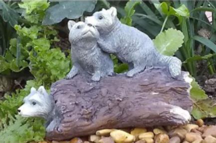 Rascally Raccoons
