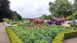 Visite des jardins de Villandry