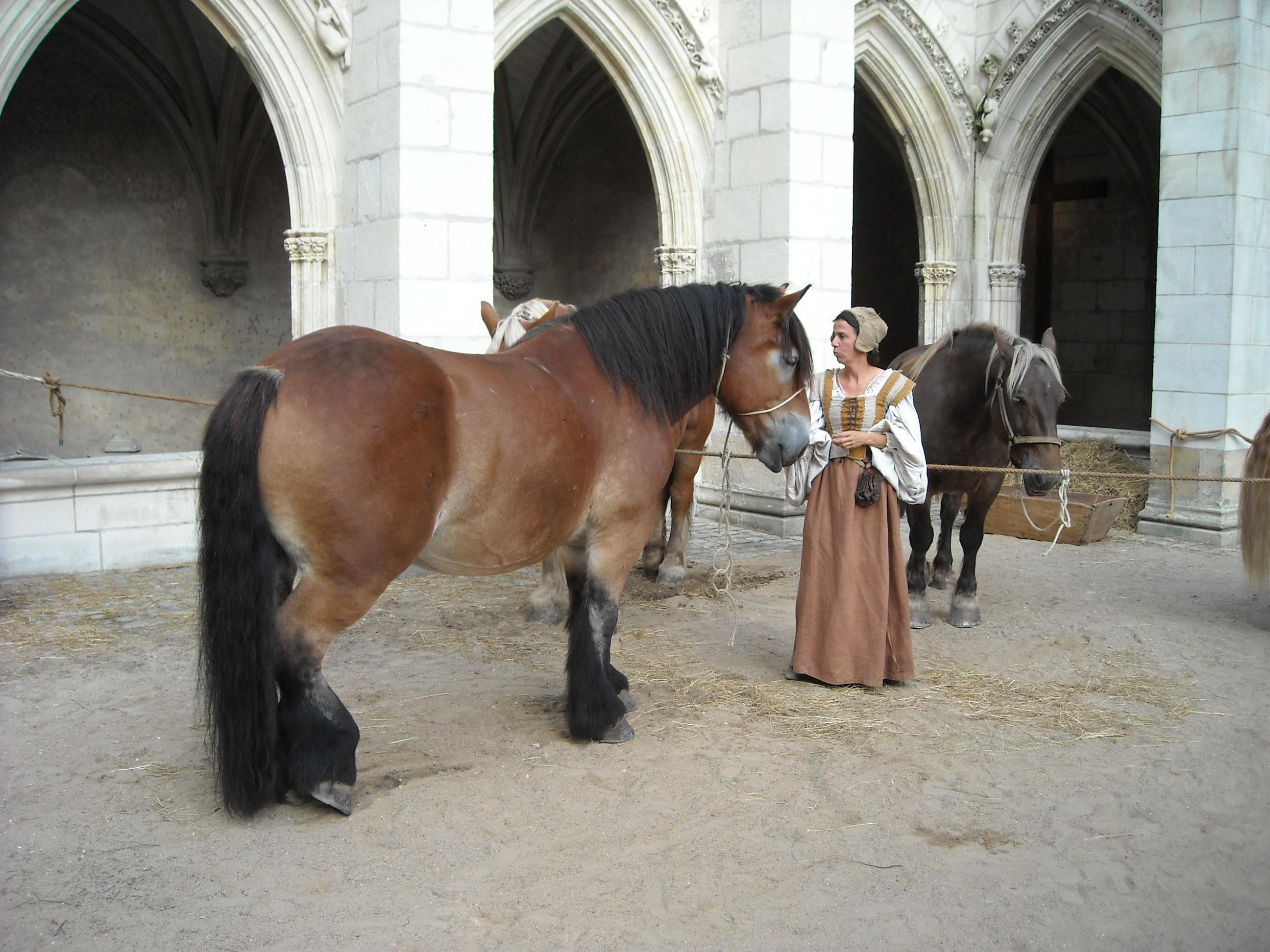 Reconstitution Moyen-Age