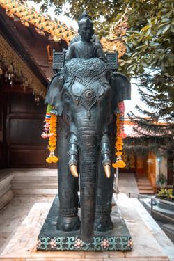 Great Chiang Mai1