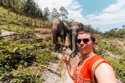 Great Chiang Mai19