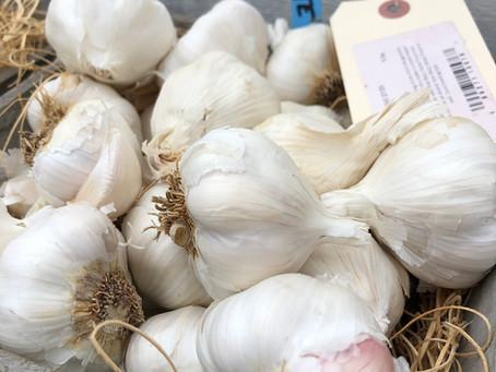 Garlic Garlic Garlic!!!