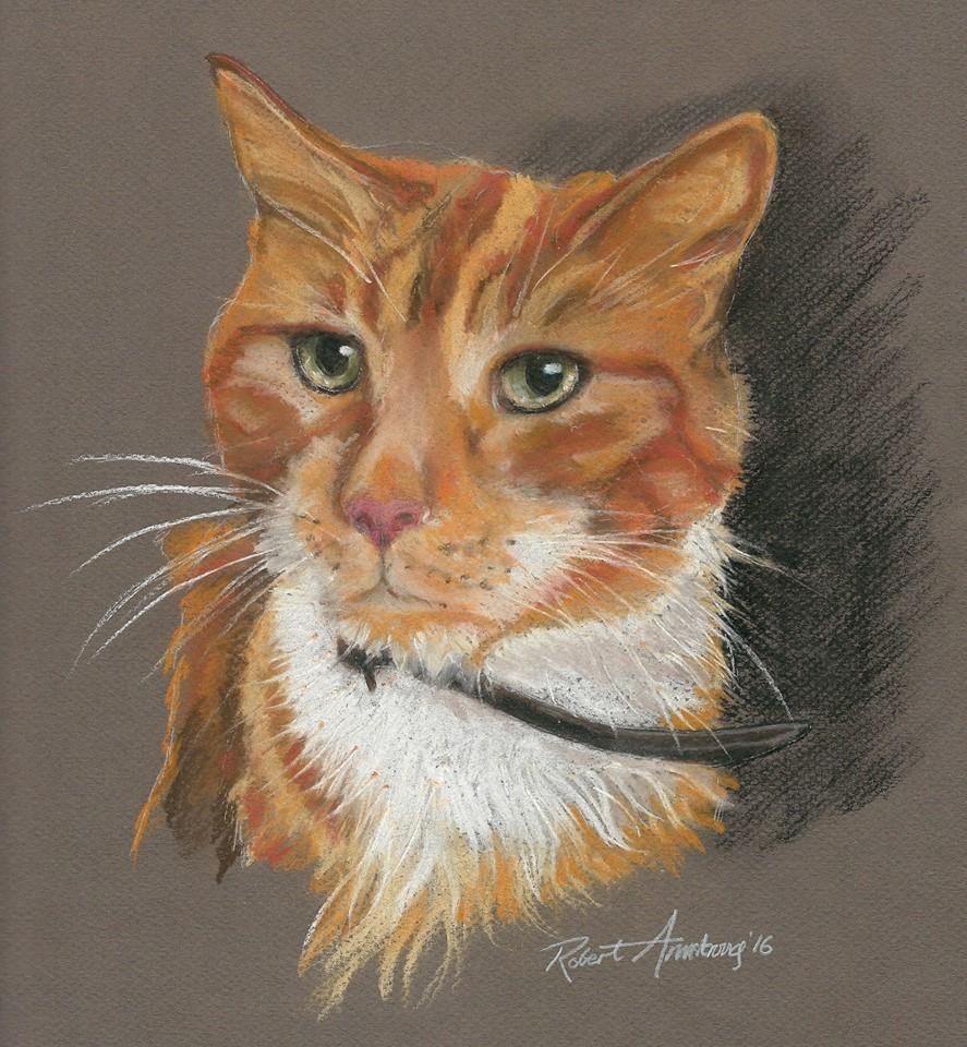 Tigger, the Cat