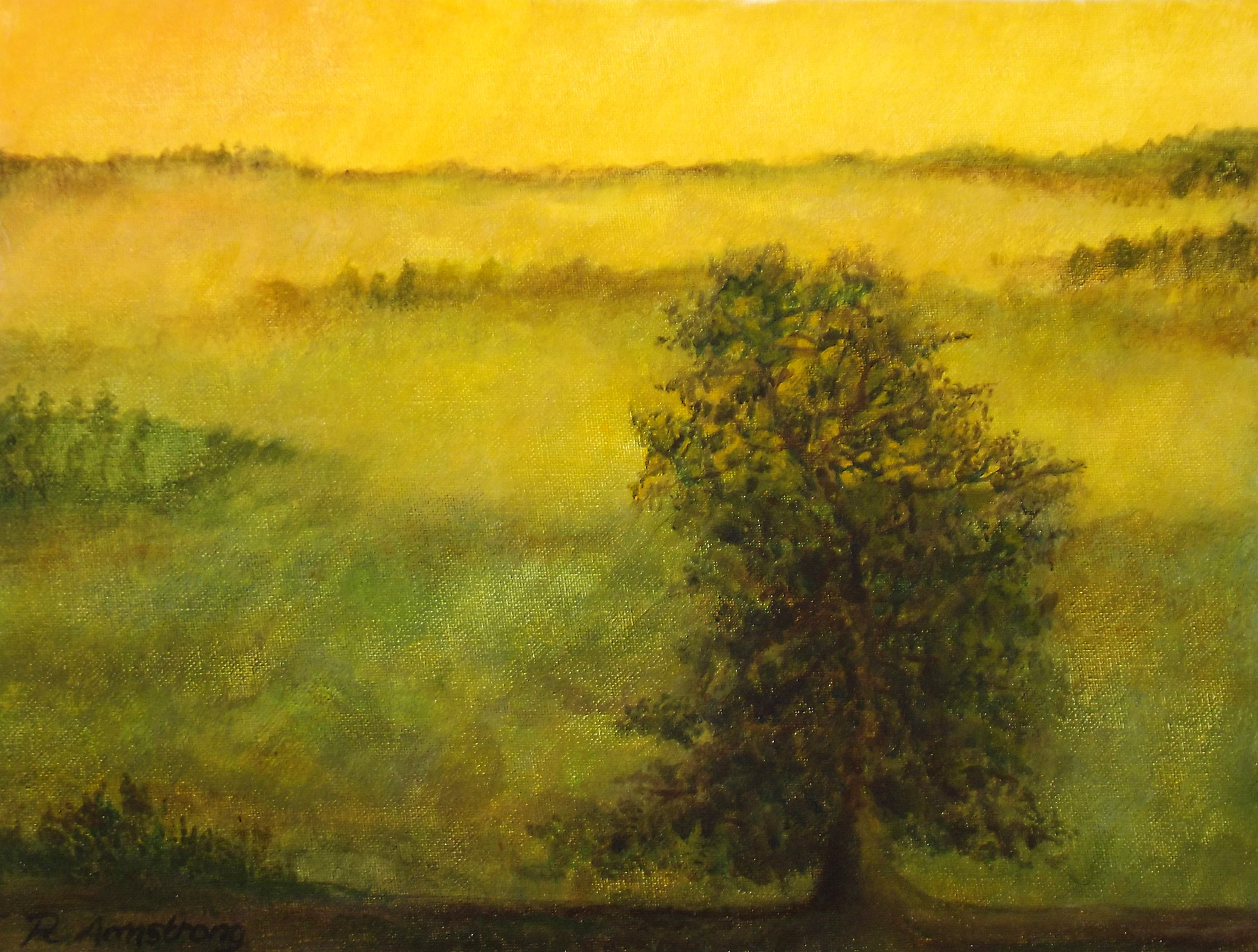 Tree in Yellow Mist