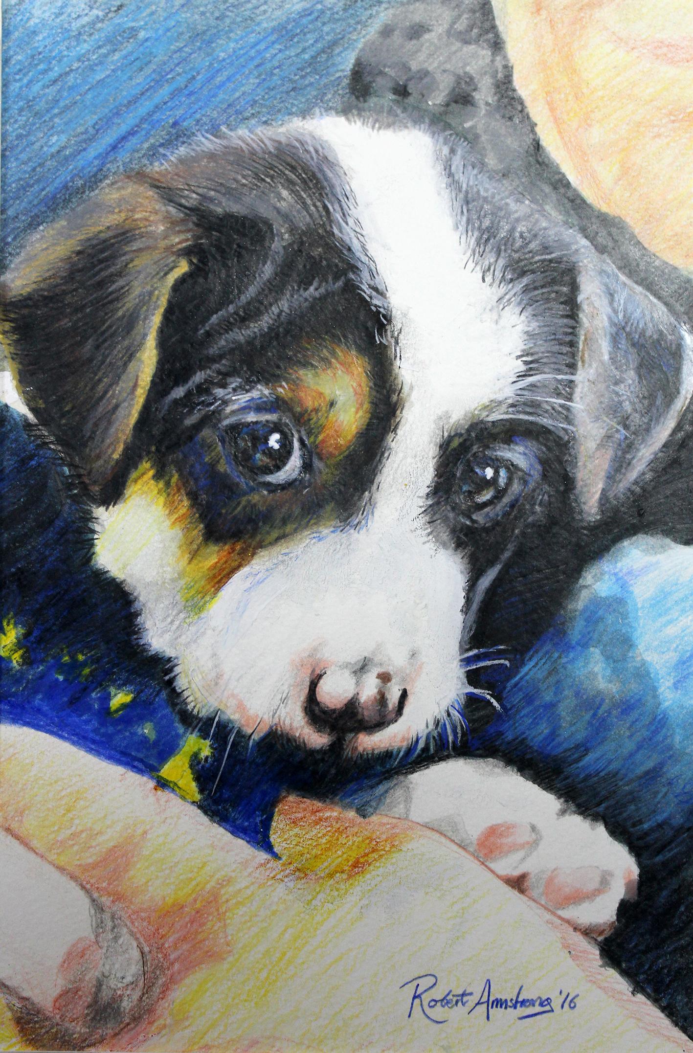 Cuca Puppy