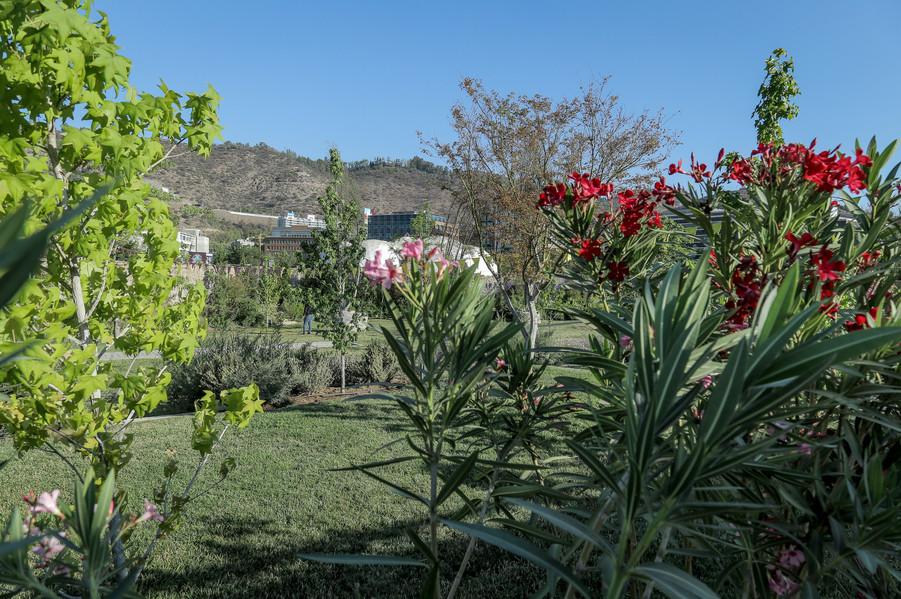 Bosque Luz_Parque-28.jpg