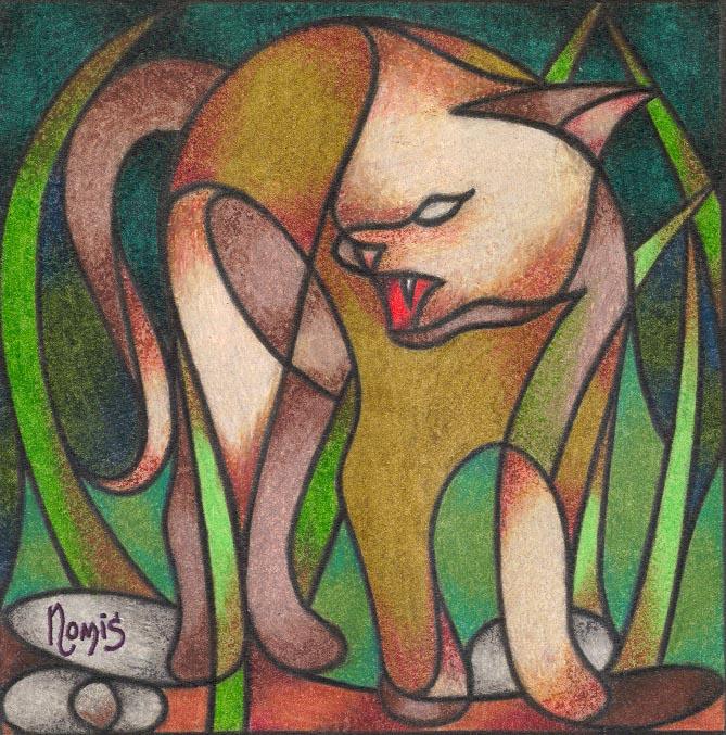'Tom Cat'