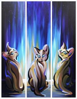 Star Gazers (Triptych)