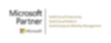 Finchloom 100% Microsoft Gold Partner