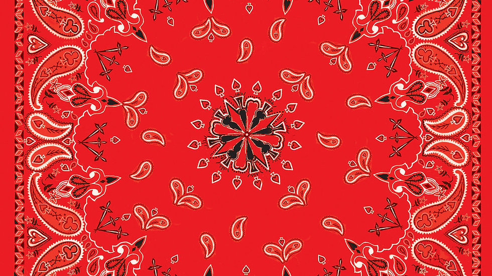 Bandana Red Paisley