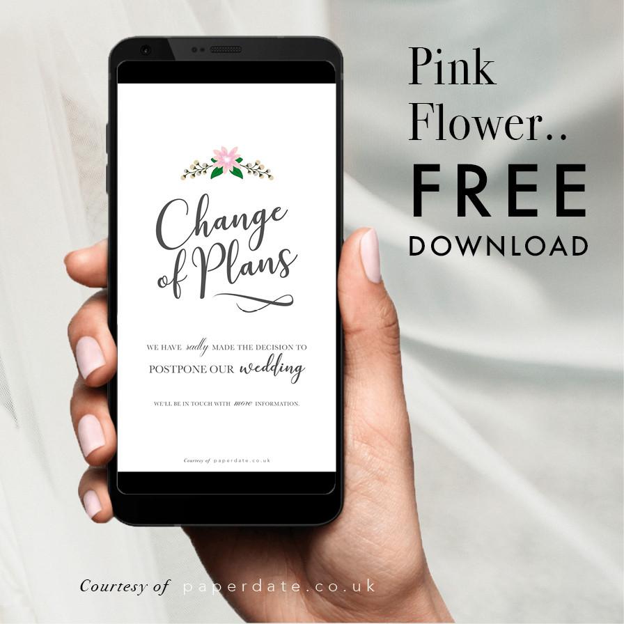 Blooms - Pink Flower
