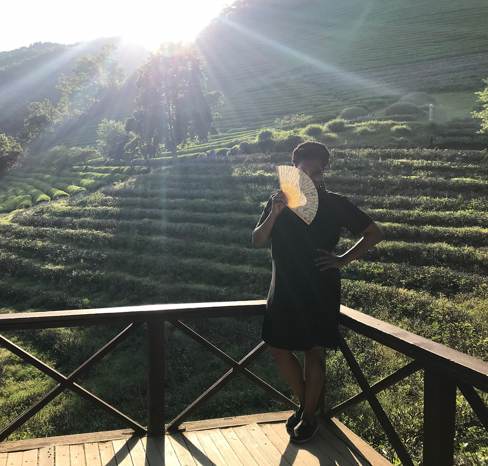 Teas The Thing: Beosong Green Tea Plantation