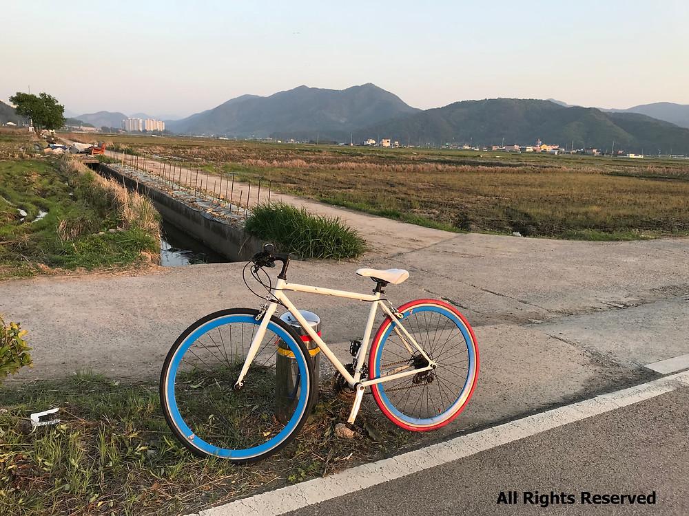 Ride or die! Bicycling through Korea