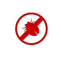 Virus Removal Alton