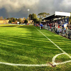 Darling Street Oval / NOFC