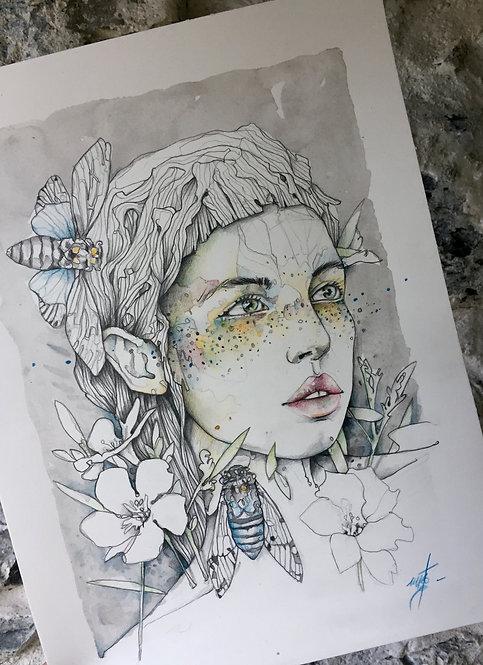 * cicadas's lady *